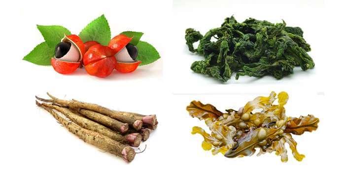 Greenherb วิธีกิน อาหารเสริม จริง ยาเพิ่มขนาด สรรพคุณ